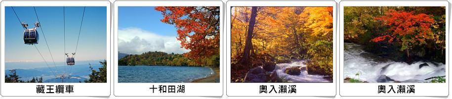 秋天大树线条画