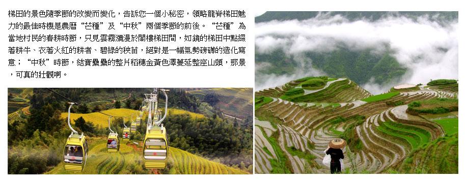 桂林,陽朔,龍脊梯田